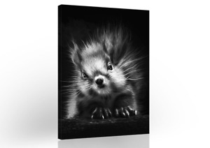 Squirrels Black White Modern Canvas Wall Art Living Room Painting Home Decor