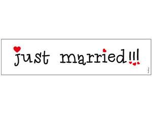 """Hochzeitauto Schild """"Just Married"""" für Kennzeichenhalter KFZ Kennzeichen"""