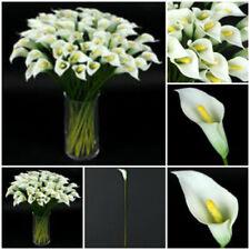 Flores secas y artificiales decorativas de color principal blanco de plástico para el hogar