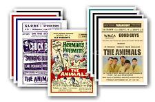 los animales - 10 PROMOCIONAL Pósters Coleccionable Tarjeta Postal Juego #1