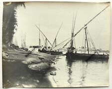 GRANDE PHOTO EGYPTE  le NIL bateaux felouques EG29