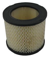 Air Filter Pentius PAB3924