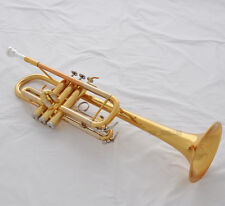 Prof Electrophoresis gold Trumpet New C Key Horn Monel Valves With Case