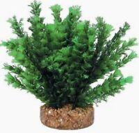 Decorazione pianta finta PHYTOS 25 cm9x9x20h per acquario dolce o marino