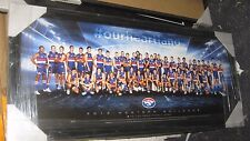 2015 W'Bulldogs  FC team poster - framed -perspex.Official AFL licensed product.