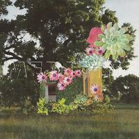Medicine - Home Everywhere [New CD]