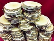 """50 YELLOW BIRCH WOOD SLICES 2 1/2"""" - 3"""" WOODEN CRAFTS  ORNAMENTS COASTERS DRIED"""
