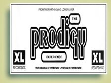 Prodigy Experience Poster