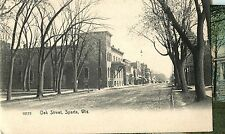 A Quiet Day on Oak Street, Sparta WI 1907