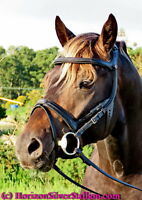Stubben 2500 FREEDOM Cut Out Shaped COMFORT Padded Headpiece ERGONOMIC Bridle BN
