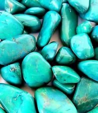 Green Howlite Dyed Qty 3 Tumbled Stones 25mm Reiki Healing Crystals Anxiety Calm