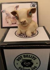 Harmony Kingdom Pot Bellys Spotsie Nib