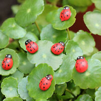 20/50/100pcs Seven Star Ladybug DIY Accessories Wood Craft House Garden Decor