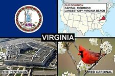 SOUVENIR FRIDGE MAGNET of THE STATE OF VIRGINIA USA