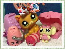 Littlest Pet Shop RARE #1998 Orange Baby Kitten Green Eyes w/ Accessories