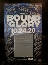 IMPACT mounted poster w/ BFG canvas swatch, autographed by 15 KNOCKOUTS * 1/7
