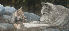 """The Lesson"" Judy Larson Fine Art Giclee Canvas - Wolves"