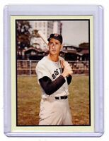 Ted Williams, '53 Boston Red Sox Vintage Litho limited edition