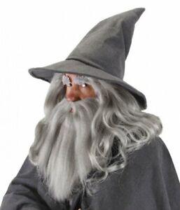 GANDALF GREY WIZARD HAT Costume Hobbit LOTR Lord Rings Sorcerer Gray LICENSED