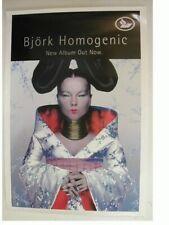 Bjork Promo Poster Homogenic Sugar Cubes The