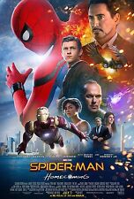 Spider-Man: Homecoming Movie Poster (24x36) - Tom Holland, Zendaya, Vulture v5