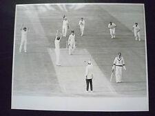 Cricket Press Photo- Dickie Bird,Graeme Wood in 1981 England v Aust. Test Match
