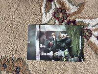B1r postcard used see my cat jump 1906 boy playing