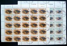 SOLOMON ISLANDS 1993 Crabs $4 & $10 x 25 of Each Cat £212 NEW SALE PRICE BN1080