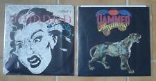 Lot de 2 Maxi Vinyls du groupe THE DAMNED
