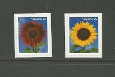 Booklet Singles #2443 & 2444 Sunflowers