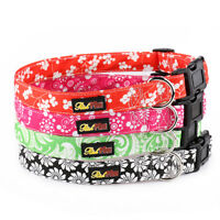 Patterned Dog Collar and Matching Lead Set - Puppy and Dog - Fauna by RichPaw