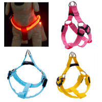 RECHARGEABLE HARNESS LED GLOW dog pet night safety light-up S M L XL micro usb