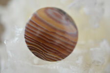 Mexican Hickoryite Free Form Cabochon 14.7 grams 35.79 X 36.31 X 8.55MM