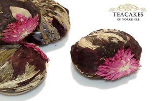 Artisan Green Tea Volcano Flower Burst Flowering 6 balls