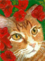 NEW BCB Orange Tabby Cat in Azalea Bush Original Painting ACEO 2.5 x 3.5 Inches