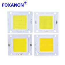 LED Chip Bulbs COB LED Cool white Driver Supply High Power 20/30/50/70/100W