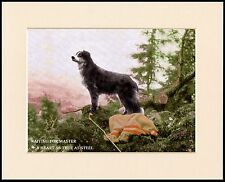 BORDER COLLIE WAITING FOR MASTER DOG PRINT MOUNTED READY TO FRAME