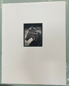 MICHAEL KENNA Signed STEPHEN Toned Gelatin Silver Print NUMBERED Limited Edition