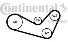 CONTITECH Juego de correas trapeciales poli V para VW SEAT AUDI A2 6PK1080K1