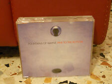 FOUNTAINS OF WAYNE - SINK TO THE BOTTOM - CAN'T GET IT OUT OF MY HEAD non LP