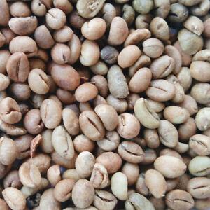 Ceylon 100% Natural Organic Unroasted Robusta Green Coffee Beans 100/200/400g