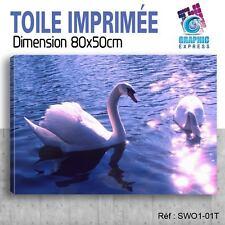 80x50cm - TOILE IMPRIMÉE TABLEAU  POSTER DECO - SWAN - SIGNE - OISEAUX - SW1-01T