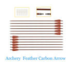 Turkey Feather Carbon Arrows Spine 400 for Recurve Bow Compound Bow Screw in Tip