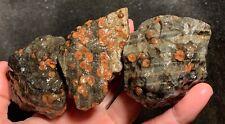 New listing Rare Mexican Peanut Obsidian Rough!