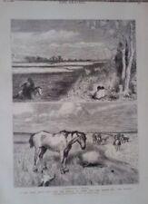 Antique (Pre-1900) Medium (up to 36in.) Landscape Art Prints