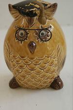 Vintage Owl Graduate Coin Bank L#307