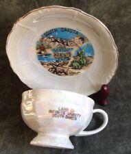 Vtg South Dakota Souvenir Porcelain Pearlescent Cup & Saucer
