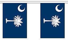 SOUTH CAROLINA U.S. STATE BUNTING 9 metres 30 flags Polyester flag