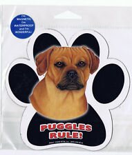 Puggles Rule Waterproof Bumper Sticker Magnet NIP