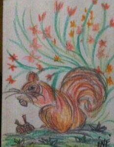 aceo original by Iné 1/1 Squirrel red scoiattolo Rosso paesaggio con fiori & nut